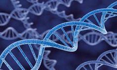 Thisisbignews.gr: Το Ελληνικό DNA: Ένα μοναδικό φαινόμενο! Όλα όσα π...