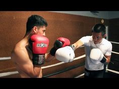 How to Parry Punches Johnny Nguyen | ExpertBoxing.com #boxing