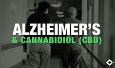 Study: Cannabidiol (CBD) May Help Fight Cognitive Impairments From Alzheimer's