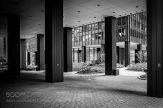 Mies Van Der Rohe -