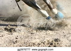 """Horse Feet Racing""- Horse Stock Photo from Gograph.com Horse Photos, Art Images, Clip Art, Racing, Horses, Stock Photos, Legs, Illustration, Pictures"