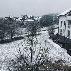 Frosty snow.
