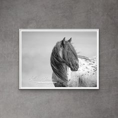 A gorgeous wild blue roan stallion stallion named Blue Zeus turns his head in the wind in Wyoming's Red Desert. This is an unframed fine art print, signed by Carol Walker and printed on archival paper with archival inks.
