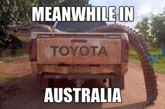 Meanwhile In Australia! - https://funnystuff.today/meanwhile-in-australia/