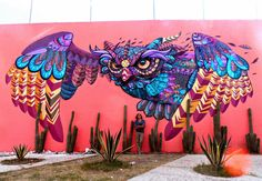 Farid Rueda with his work in Mexico, 2/15 (LP)