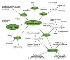 Metsä elinympäristönä –miellekartta Teaching, School, Kids, Young Children, Boys, Children, Education, Boy Babies, Child