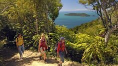 Things to do in Picton New Zealand