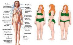 3-forgotten-essential-thyroid-diet-principles