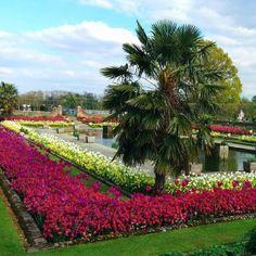 spring-in-kensington-gardens-and-hyde-park
