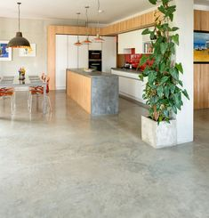 Polished Concrete Floor and In-situ Worktop Lazenby's Cool Grey polished concrete floor throughout the ground floor and Cool Grey cast in-situ worktop with an ebony chemical stain in the open plan kitchen/diner. Photography by Jeremy Phillips.
