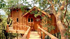 Tree House Masters - TV show on the Animal Planet with Pete Nelson. This guy can build some amazing tree houses! Big out west - many people are building tree houses for their guest house, and/or for when the kids come home to visit. Treehouse Masters, Treehouse Living, Treehouse Builders, Treehouse Ideas, Treehouse Cabins, Woodland House, Cool Tree Houses, Nice Houses, Tree House Designs