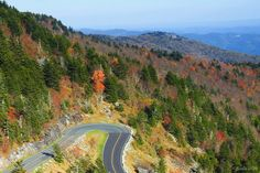 On the Grandfather Mountain