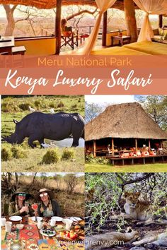 Begin your Kenya safari holiday at Elsa's Kopje. Guests will find the perfect eco-luxury destination. Site of Born Free and Africa's abundant wildlife. Africa | Kenya | eco-luxury | safari | Meru National Park