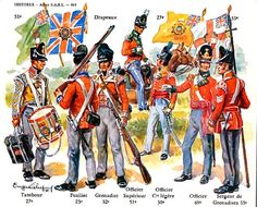 The Offical Napoleon Total War Historic Uniforms Thread Military Weapons, Military Art, Military History, Military Uniforms, British Army Uniform, British Uniforms, Bataille De Waterloo, Battle Of Waterloo, Waterloo 1815