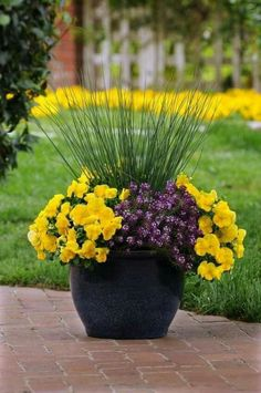 37 Lovely Flower Pots Ideas For Your Garden That Will Amaze You - In gardening, commercial planters pose greater benefits and advantages than the ordinary clay pots that we use at home. Aside from durability and qual. Fall Planters, Flower Planters, Fall Flower Pots, Cheap Planters, Christmas Planters, Modern Planters, Indoor Planters, Concrete Planters, Ceramic Planters