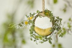 Wonderful Props - Green and Yellow Nest - Digital Backdrop - Photo Prop for Newborn Photography