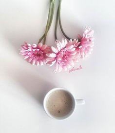 Coffee lovers☕☕. . . . . .  #acolorstory #pantone #dscolor #creativity #rainbow_wall #thatsdarling #huntgramcolor #darlingmovement #flatlay #tv_lifestyle #prettyinpink #mastersofwhiteness #tv_allwhite #minimalist #pocket_creative #flowerstagram #flowerstalking #coffeetime #allwhatsbeautiful #tv_stilllife  #arte_of_nature#coffeelover #coffeelovers #coffeeaddict #tea #tealover #tealovers #teaaddict #coffeeandseasonsfeatured #roses