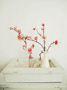 lush bella's beautiful cherry blossoms: ahh, spring.