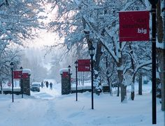 20081223EWUSnow07.jpg by Eastern Washington University, via Flickr