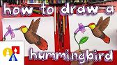 How To Draw A Blue Jay - YouTube