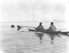 Polar Inuit Men Hunting from Kayaks. Summer hunting in open water requires boats. Since the mid-nineteenth century, Polar Inuit have used fast and quiet kayaks to hunt seal, walrus, and narwhal from the water. Donald MacMillan ca. 1923-1924, Northwest Greenland