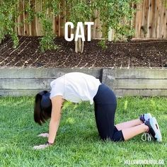Keep the kids moving, fit and having fun with these hilarious animal exercises! They'll love pretending to be one of their favorite animals! Physical Activities For Kids, Physical Education Teacher, Kids Yoga Poses, Yoga For Kids, Cat Exercise, Exercise For Kids, Fit Board Workouts, Fun Workouts, Youth Games Indoor