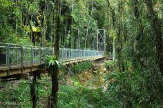 Bridge at Cystal Shower Falls by Harlz_, via Flickr