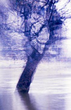 Asca S.R. Aull - Heaven On Earth/Paradis Sur Terre (Fine Art Photography) - _Paris, ile Saint Louis