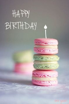 Typically Tali: Happy 1 year blog birthday!