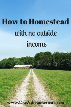 Homesteading With No Outside Income