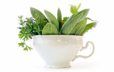 Rețete vechi pentru o problemă actuală: CĂDEREA PĂRULUI Salvia, Planter Pots, Cosmetics, Health, Grip, Medicine, Health Care, Sage, Salud