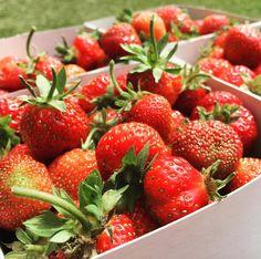 "13 gilla-markeringar, 2 kommentarer - Jessie💕 (@ijezzie) på Instagram: ""Left this morning and picked 4liter #strawberries, perfect for #breakfast 👩🏼🌾🍓❤️❤️ #summer…"""