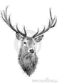 Reindeer head drawing - photo#13