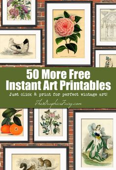 50 (More) Free Wall Art Printables. Graphics Fairy. Just click and print for some instant Vintage DIY Wall decor!