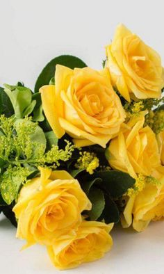 Rose Garden I wish someone could give me this on my birthday! Lavender Roses, Yellow Flowers, Pretty Flowers, Yellow Rose Bouquet, My Flower, Flower Art, Flower Power, Porch Garden, Rose Of Sharon
