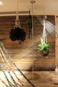 Cork and string Air Plants, Indoor Plants, Inside Plants, Plant Design, Hanging Plants, Garden Styles, Houseplants, Plant Hanger, Home Interior Design