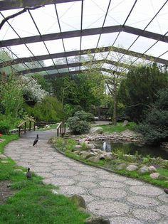 Weltvogelpark Walsrode: Mon Zoo, Zoo Architecture, Zoo Park, Zoological Garden, Bird Aviary, Cat Enclosure, Animal Habitats, Paludarium, Pet Cage