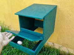 The Chicken Coop: chicken and NESTS (roll-away)