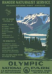 Love the vintage National Parks posters! Maybe in the guest room?