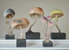 Mister Finch - March Fungus, found on Mr. Finch's wonderful website gallery.