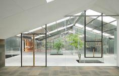 Uma estufa abandonada se transformou em um lindo conjunto de escritórios com árvores internas na China!