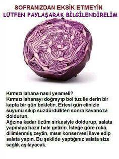 kirmizi lahana