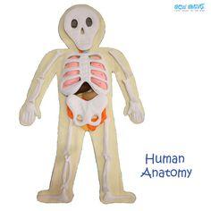 Anatomía humana por SewSmartHome en Etsy