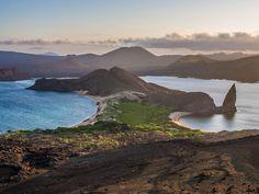 19. Islas Galápagos (Ecuador) http://www.southamericaperutours.com/southamerica/12-days-wonders-of-machu-picchu-and-galapagos.html