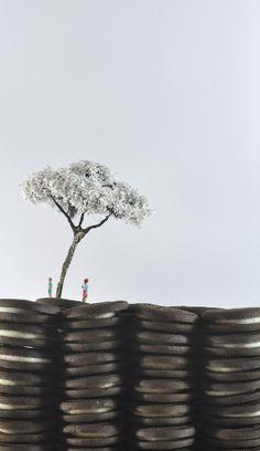 Moisés Crivelaro - sua arte, seu planalto #fotografia #art #fridom #brasil #brasilia