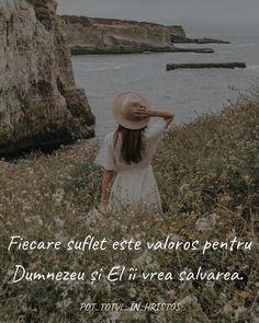 Salvia, Panama Hat, Sage, Panama