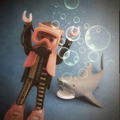 Buzo y tiburón