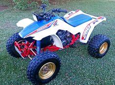 1986 Honda TRX250R Fourtrax