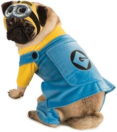 Despicable Me Minion Doggie Halloween Costume With Jumpsuit And Headpiece -- Quickly view this special dog product, click the image : Costumes for dog