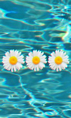 Resultado de imagem para wallpaper tumblr